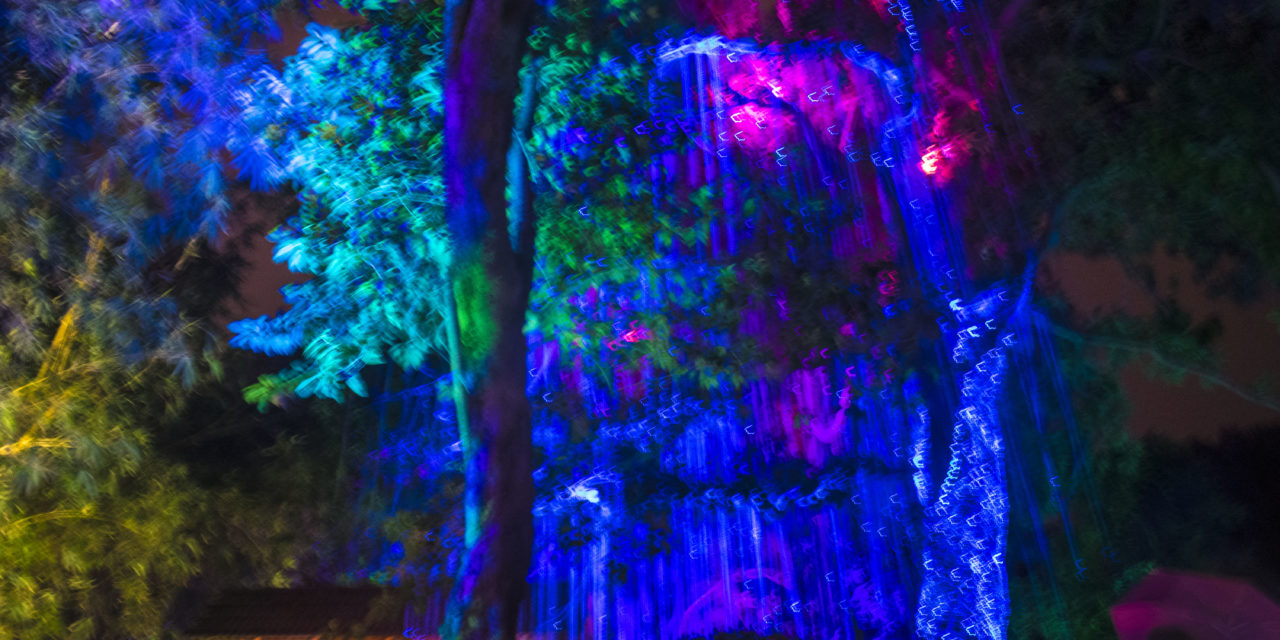 Avatar Secret Garden, Tanjong Bungah, Penang